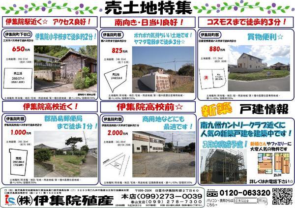 2013.3.9.2.JPG